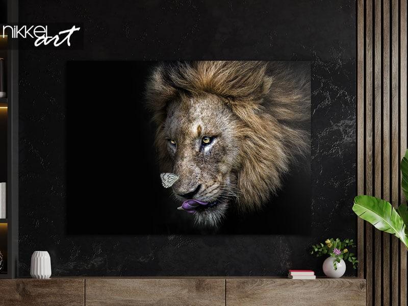 Löwe auf Alu-Dibond: ein echter Blickfang