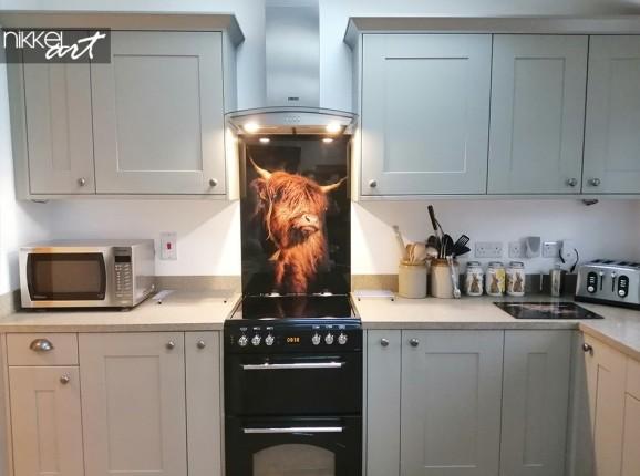 Foto Hochländer auf Küchenrückwand