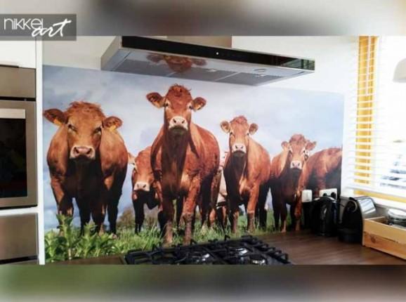 Küche Foto Rückwand Kuh