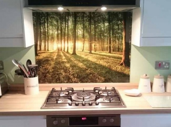 Küchenrückwand foto glas Wald