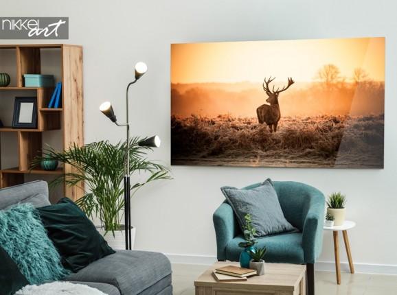 Foto auf Acrylglas Hirsch