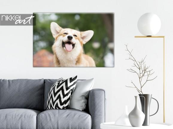 Foto Ihres Hundes auf Leinwand