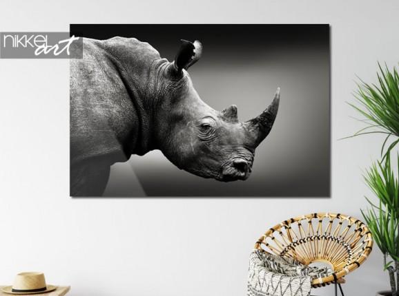 Nashorn auf Acrylglas