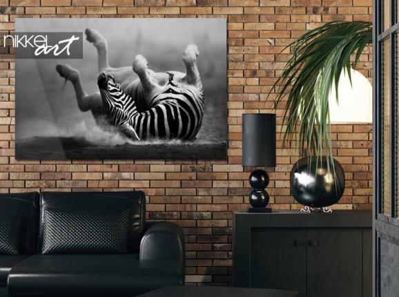 Zebra auf Acrylglas