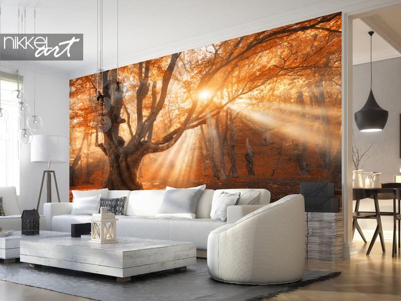 Fototapete mit Herbstwald