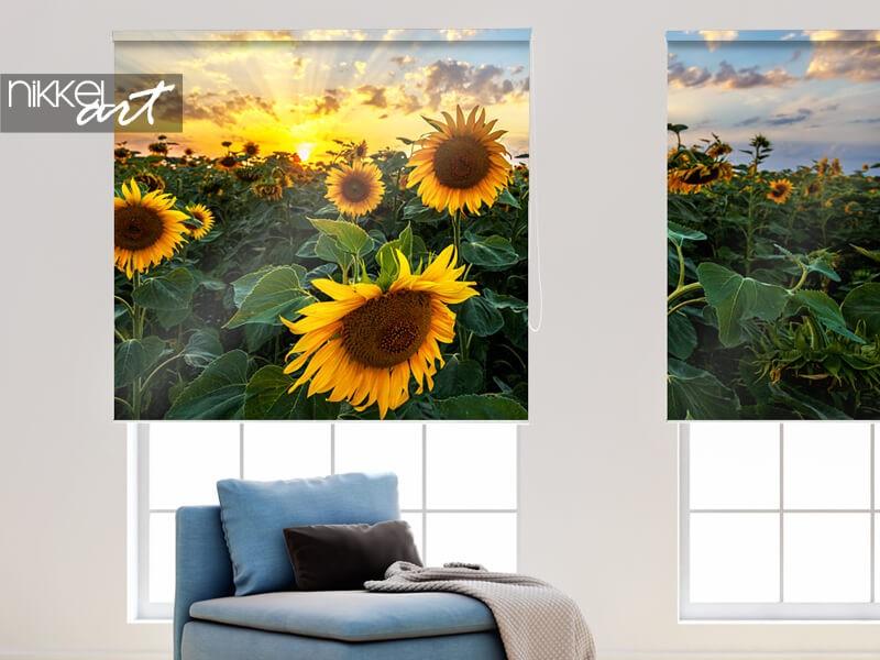 Sonnenblumen auf Fotorollo
