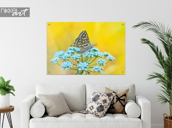 Gemälde auf Glas Schmetterling