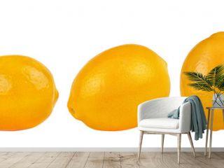 Lemons side view on white. Set of lemon fruit.