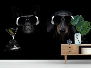 martini cocktail dog in dark black mood