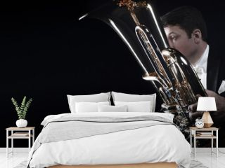 Tuba player brass instrument. Hands playing euphonium