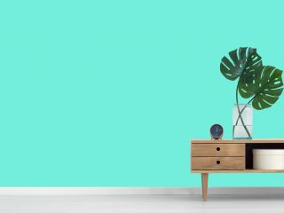 エメラルドグリーン背景の夏らしいかわいいスイカのイラストのバナー