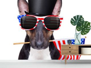 independence day, usa, july, 4th, flag, independence, bull terrier, america, american, animal, background, banner, blue, bullterrier, celebration, day, dog, election, finger, fourth, free, freedom, f