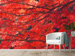 モミジの葉・秋のイメージ