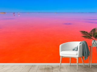 Sasyk-Sivash lake, Crimea. People take mud baths and take pictures on a unique pink lake