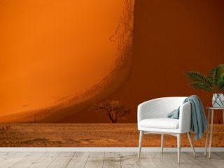 Namibia the world's highest dunes