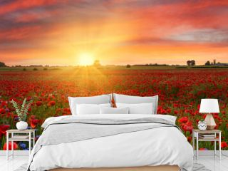 Beautiful sunrise over red poppies field