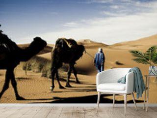 Morocco's desert