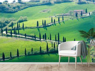 tuscany green nature