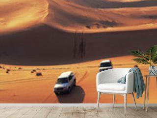 desert dunes in sweihan - emirates