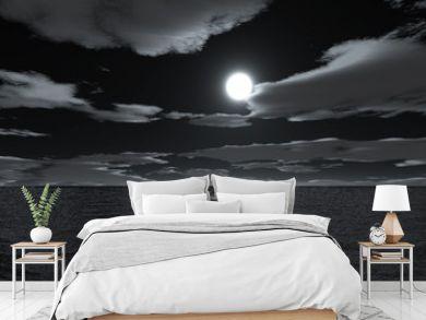 moonnight on sea