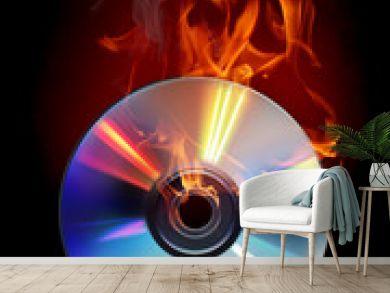 Burn disc