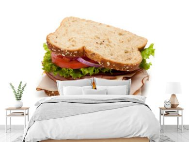 Turkey sandwich on white background