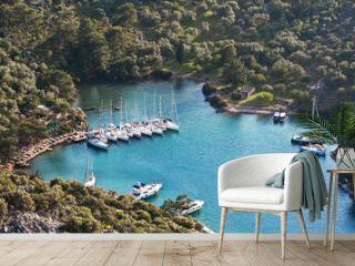 Yachts dreamland