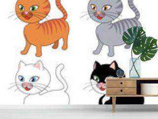gatto in 4 varianti