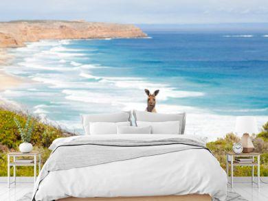 Wild kangaroo in front of the ocean