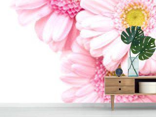 bouquet closeup pink gerbera