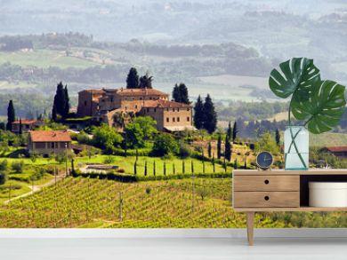 Toskana Weingut - Tuscany vineyard 03
