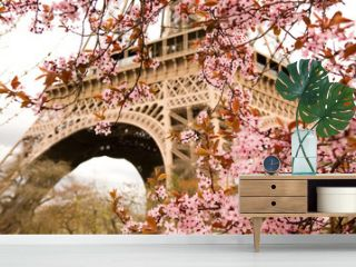 Spring in Paris. Bloomy cherry tree and the Eiffel Tower