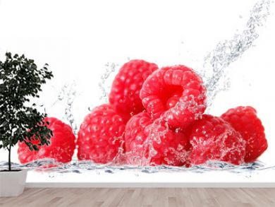 lamponi splash