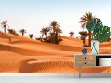 Palm trees on the desert