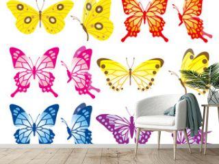 Butterfly variety set