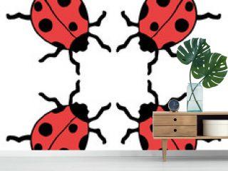 Four ladybug
