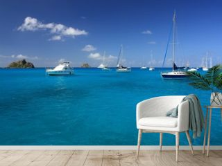 Clear water, caribbean island, yachts and boats