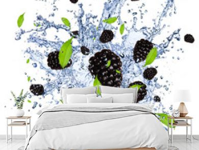 Fresh blackberries in water splash, isolated on white background