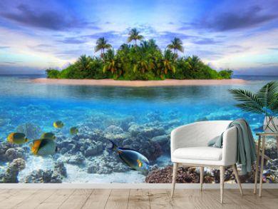 Marine life at tropical island of Maldives