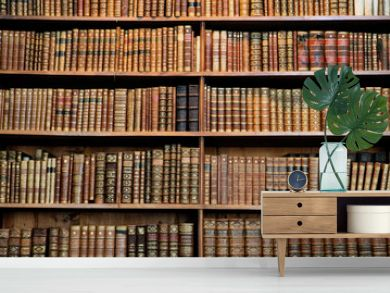 Antique book racks in an old library in Vienna