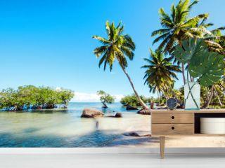Caribbean: lonely beach :)