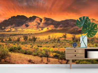 Flinders Beauty