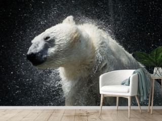Polar Bear Ends a good Shake