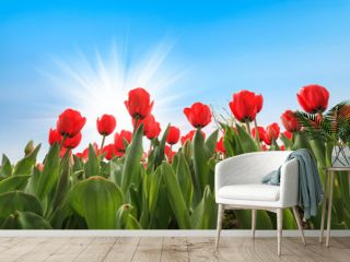 many red tulips over blue sky