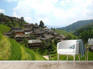Longji rice fields, Dragon Hill. Ping'an, China