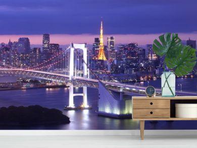 View of Tokyo Bay , Rainbow bridge and Tokyo Tower landmark , Beautiful atmosphere of Tokyo in the evening