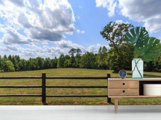 Fenced in field