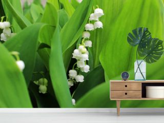 Lily of the valley, which bloom in the garden