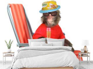 Funny monkey relaxing on a fancy deck chair