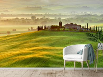 View of countryside in Tuscany  province on sunrise.  Italy